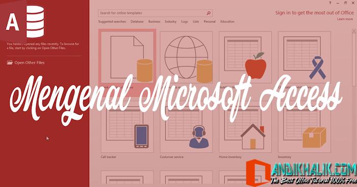 Mengenal Microsoft Access ~ Panduan Microsoft Access