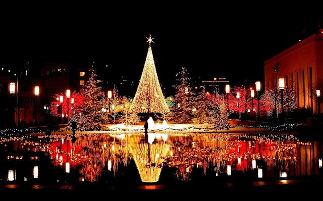 5 mejores lugares para visitar esta Navidad en India 11