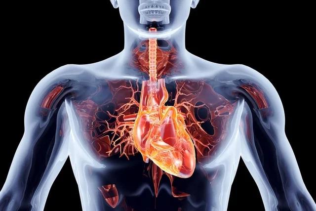 Pós operatório e recuperação após cirurgia cardíaca