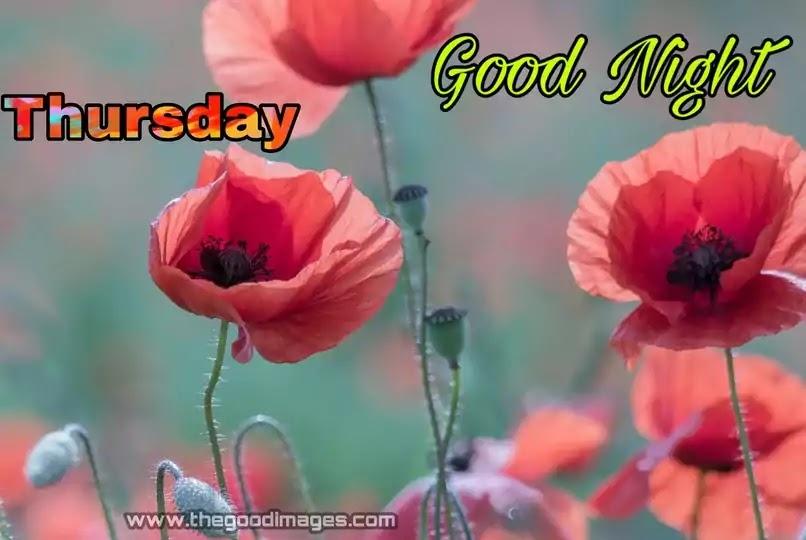 Good Night Thursday Flower Images