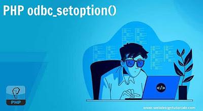 PHP odbc_setoption() Function