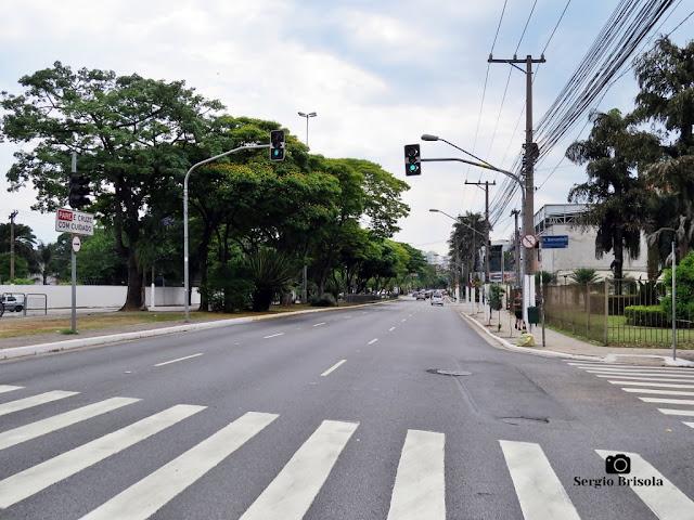 Vista de trecho da Avenida Braz Leme - Santana - São Paulo