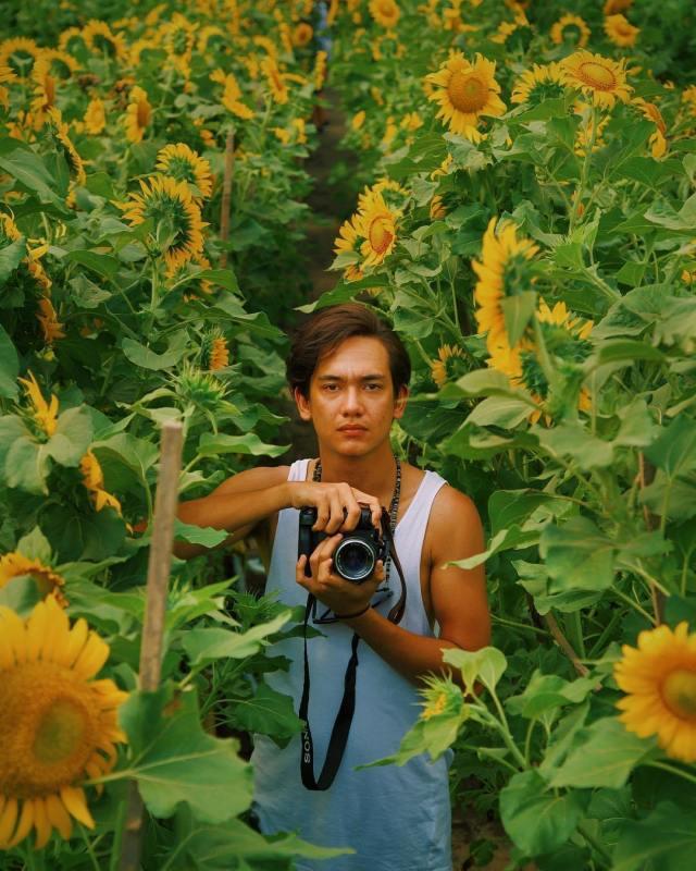 Kebun Bunga Matahari Jogja-Destinasi Wisata Alam Jogja Terhits