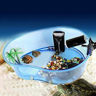 aquarium-kura-kura-murah.jpg