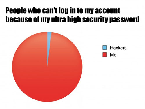 my high security password