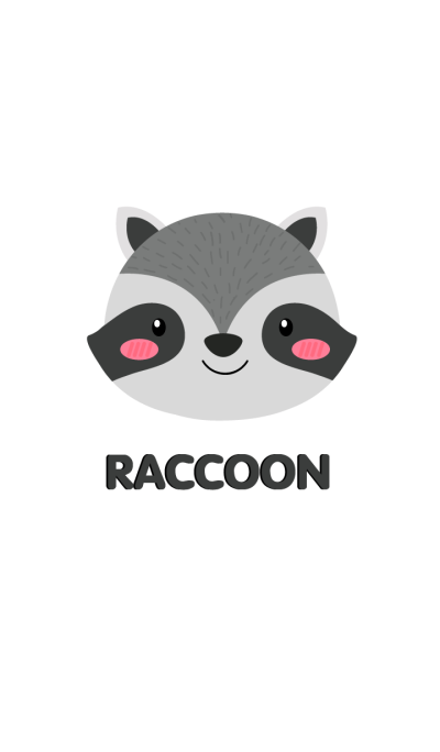 Simple Cute Face Raccoon Theme