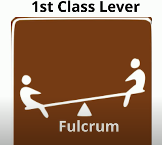 1st  class lever
