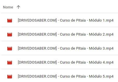 modulos-curso-de-pitaia-download