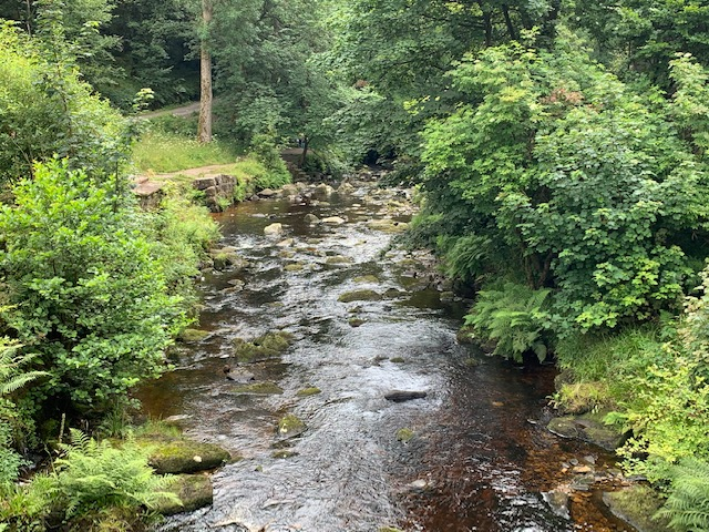 Stream at Hardcastle Crags