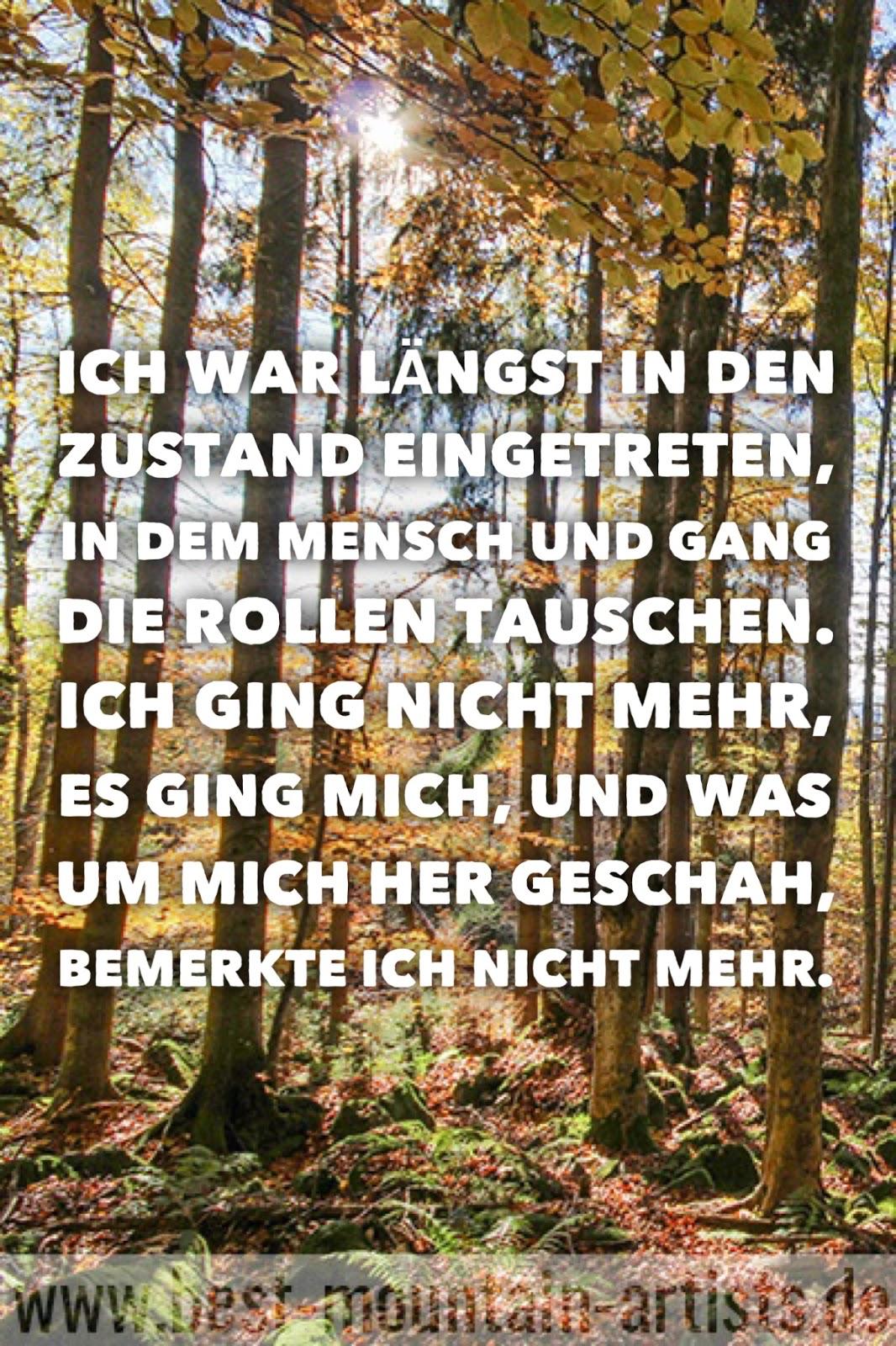 """""""Ich war längst in den Zustand eingetreten, in dem Mensch und Gang die Rollen tauschen. Ich ging nicht mehr, es ging mich, und was um mich her geschah, bemerkte ich nicht mehr."""", Wolfgang Büscher"""