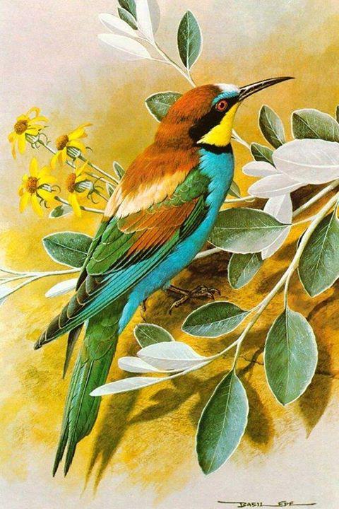 Lukisan Flora Fauna Simple Cikimm Com