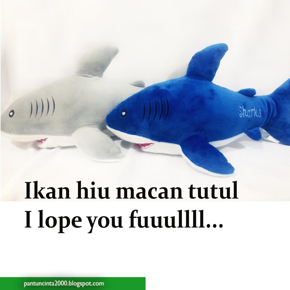 25 Pantun Ikan Hiu Romantis Abis Klak Klik Bermutu