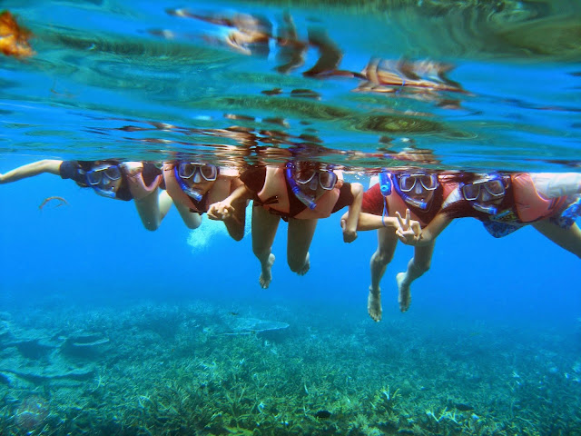 Image result for rawa island snorkeling