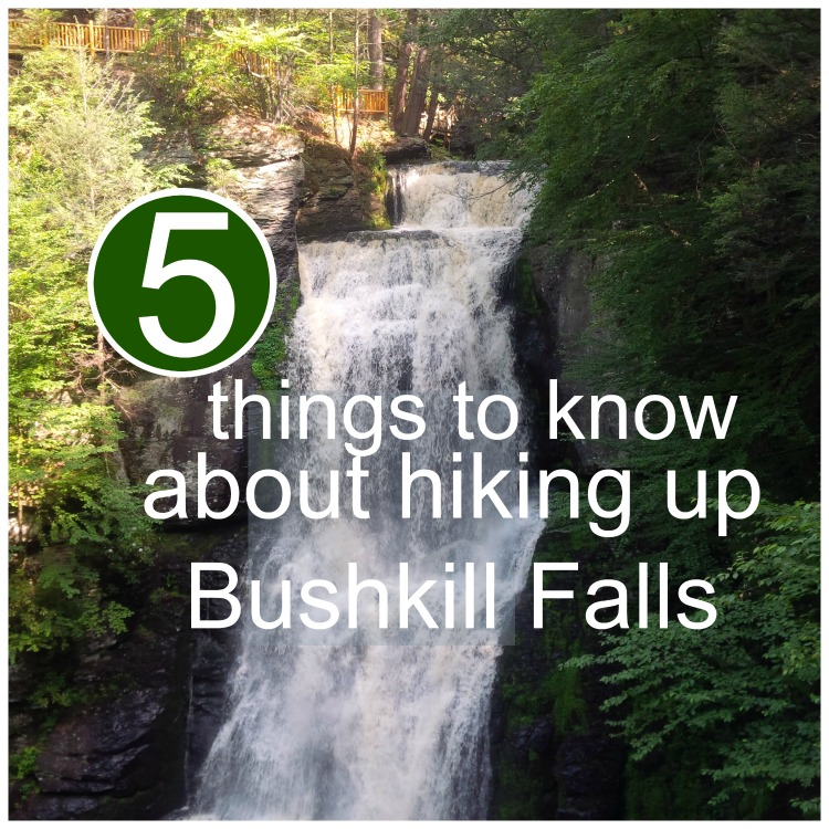 Things To Know About Hiking Bushkill Falls