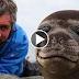 Homem deita ao lado de uma foca bebê, o que acontece é algo que vai derreter o seu coração