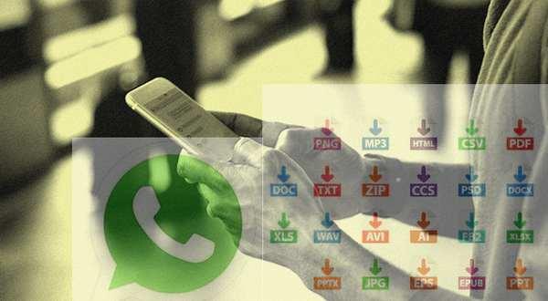 mengirim file exccel docx pptx di whatsApp