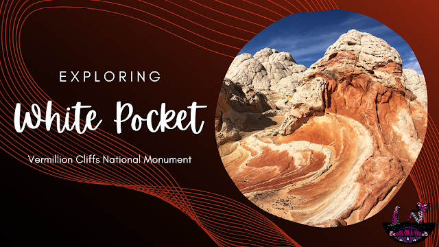 Exploring White Pocket, Vermillion Cliffs National Monument