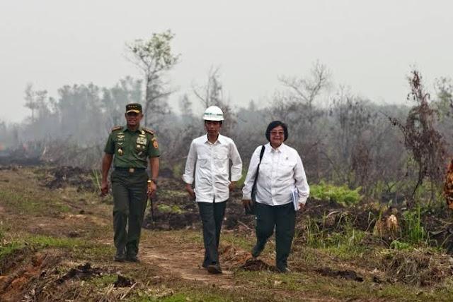 Sejak Era Presiden Megawati, Setengah dari Total IPPKH Diobral Menteri Siti Nurbaya