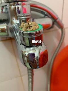 清洗水管, 水管清洗, 洗水管,管乾淨