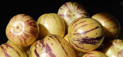 Khasiat buah pepino