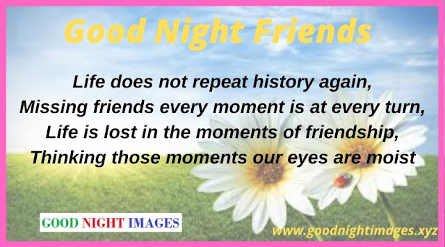 Latest Good Night Messages | good night friends images with flowers