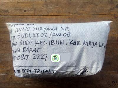 Benih padi yang dibeli   H. IDING SURYANA Majalaya, Jabar..  (Setelah packing karung).