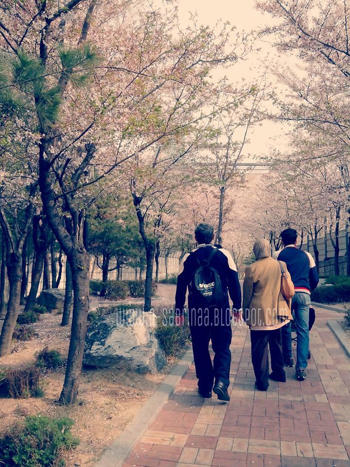 tips bercuti ke korea dengan anak kecil