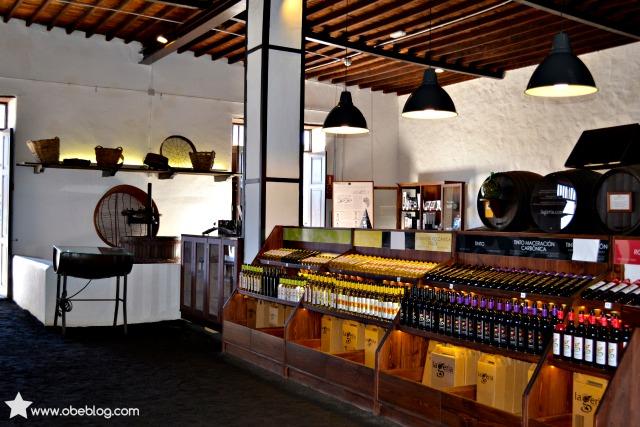 Lanzarote_vinos_entre_volcanes_ObeBlog_05
