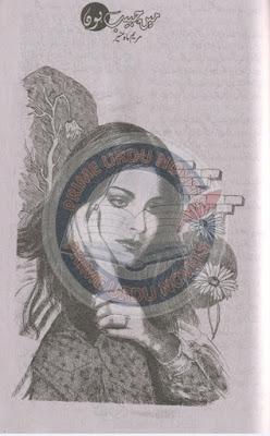 Mein habib hun novel by Maryam Mah e Munir
