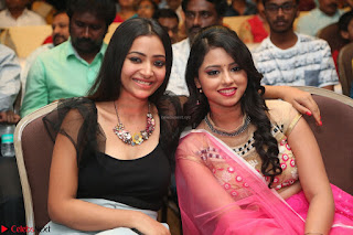 Geethanjali and Swetha Basu at Mixture Potlam Movie Audio Launch Feb 2017 012.JPG