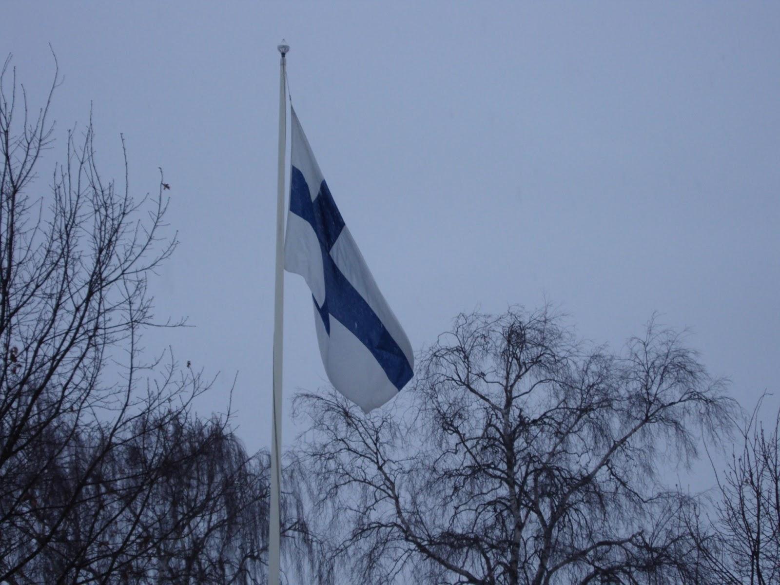 Suomen Liputuspäivät