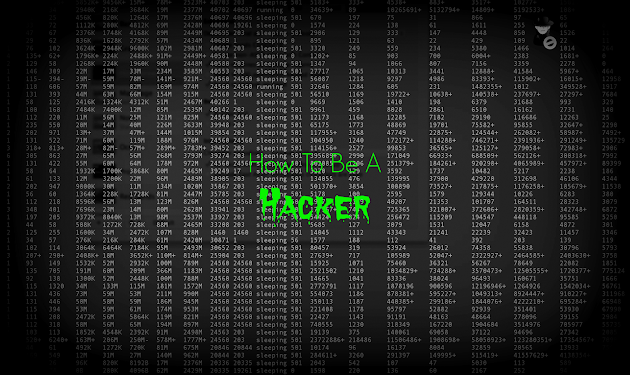 How To Become Hacker