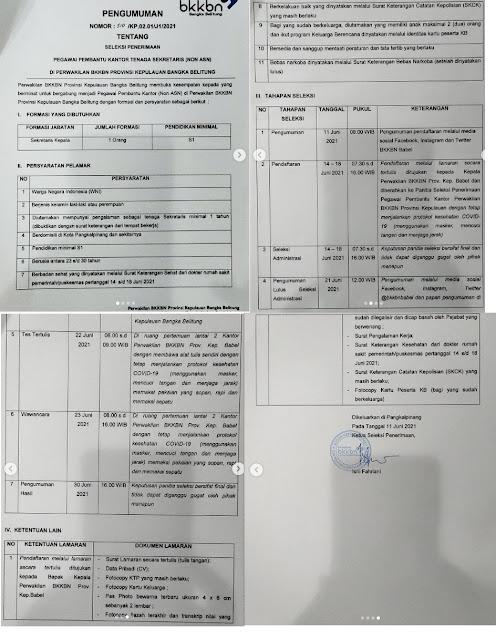 Lowongan Kerja Pangkal Pinang Juni 2021 BKKBN Terbaru