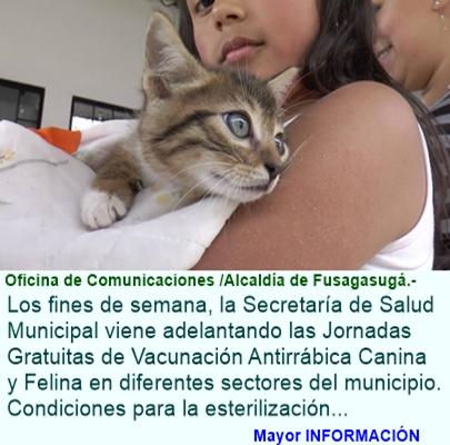 """ALCALDÍA """"JUNTOS SI PODEMOS"""" SOCIALIZA CON LA COMUNIDAD FUSAGASUGUEÑA LA NORMATIVIDAD SOBRE TENENCI"""