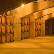 Mexican wines and wineries from Mexico: Discover the wine route in Baja California