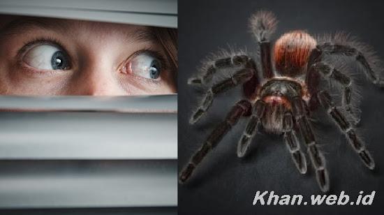 Tips Mengatasi Fobia Pada Anak