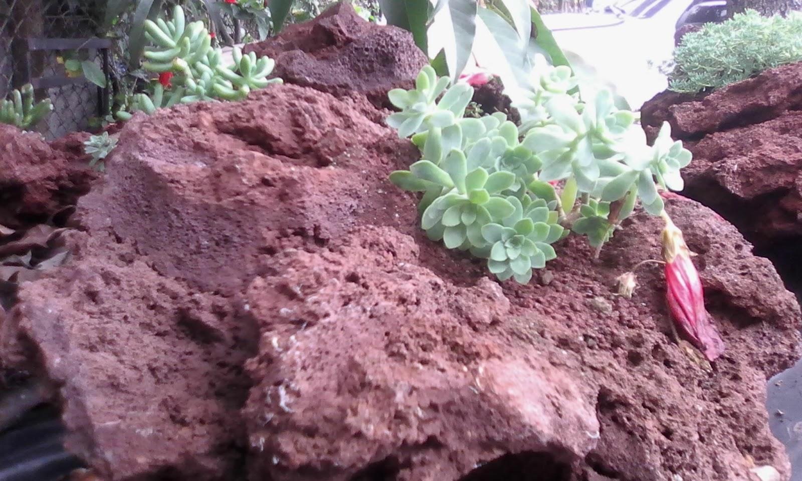 Arena grava y piedra volc nica de colores lava roca lava for Cual es el color piedra
