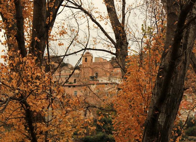 Bosques de otoño en Ayna