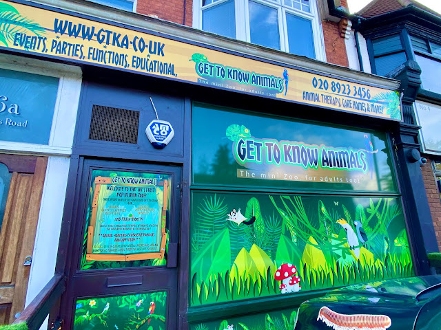 The outside of Get To Know Animals is a converted shop front with jungle themed stickers