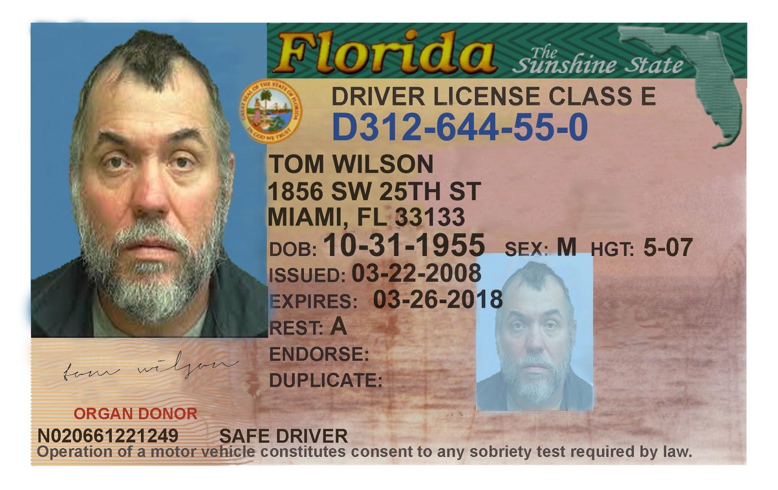 Miami License Template Topsimages