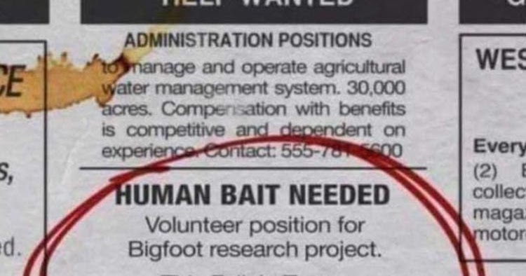 human bait needed