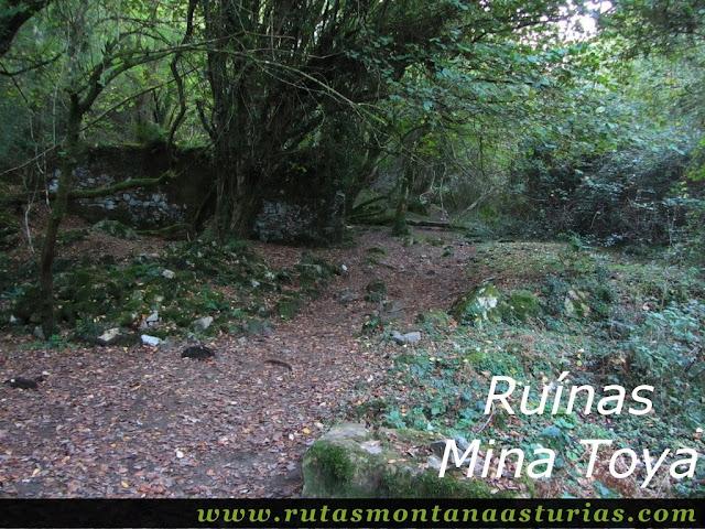 Ruta Pienzu por Mirador Fito y Biescona: Ruinas de mina la toya
