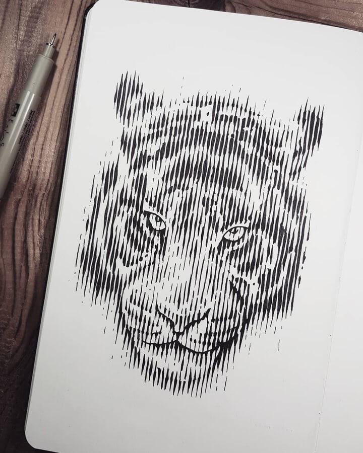 09-Tiger-lines-Dani-Torres-www-designstack-co