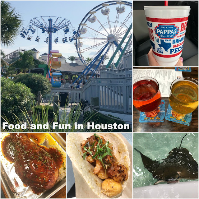 Spending some time in Houston? Check out what we did and the food we tried! Turkey Legs, Tacos, BBQ, Cider, rollercoaster, shopping and more!