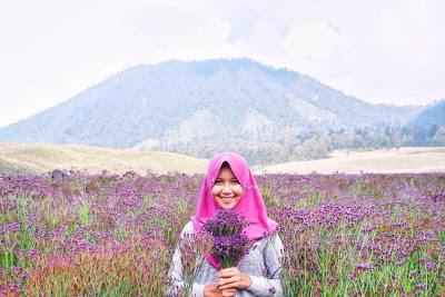 Mencabut bunga verbena