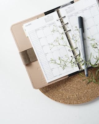 Calendario, bolígrafo y rama verde