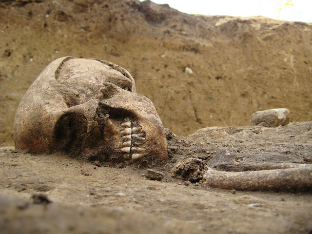 Neolithic burial found in German countryside