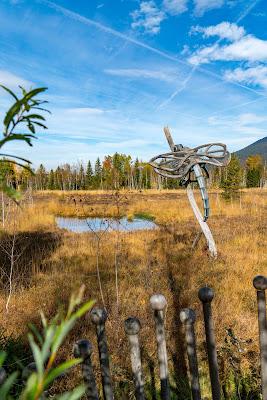 Talwanderung Inzell | Herbstwandern im Chiemgau | Moor-Erlebnis-Pfad und Reifenrutsche Kesselalm 06