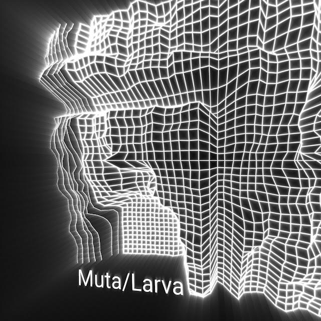 Eletrónica barroca e industrial em 'Muta/Larva' de Simon Lalli