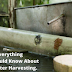 Everything You Should Know About Rainwater Harvesting.